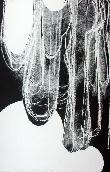 BLAIS Jean-Charles - Lithographie