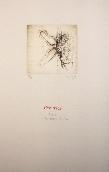 DEUX Fred - Livre d'artiste avec gravures