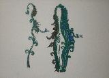 FENOSA Apel.les - Lithographie