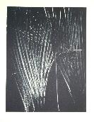 HARTUNG Hans - Lithographie