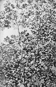 HENRY Bertrand - Encre de chine