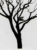 PEREJAUME  - Lithographie