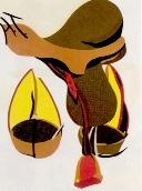 TELEMAQUE Herv� - Lithographie originale