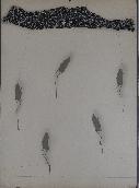 ZUSH  - Lithographie